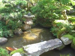 苔の美しさが際立つ趣ある和庭2