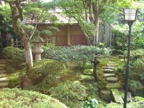 池のある本格的な個人庭園5