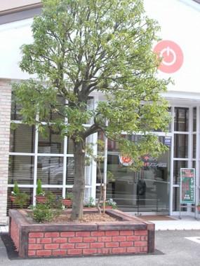レンガと枕木ブロックでデザインされた花壇  倉吉市2