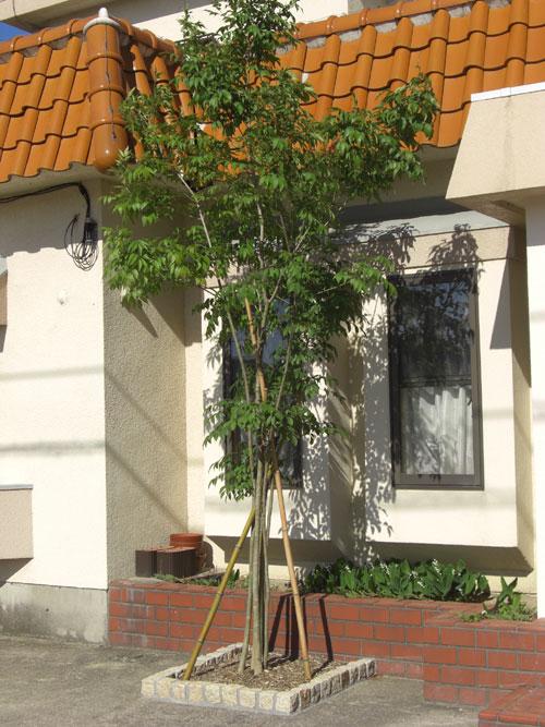 ストーンを基本としたプライベートガーデン 琴浦町 O様邸7