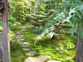 池のある本格的な個人庭園3