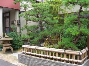金閣寺垣がよく似合う庭 2