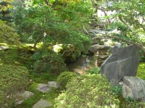 苔の美しさが際立つ趣ある和庭5