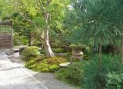 池のある本格的な個人庭園