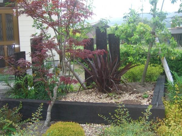 雑木が庭の雰囲気を演出してくれています4