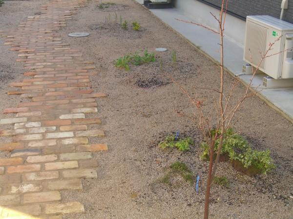 レンガ道が特徴の植物あふれるお庭 湯梨浜町 I様邸7