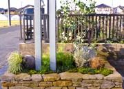 花壇と植物のさわやかな共演