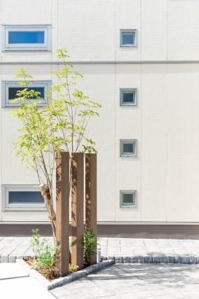 石と植栽のやわらかい雰囲気あふれるファサード 倉吉市5