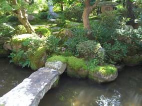 苔の美しさが際立つ趣ある和庭3