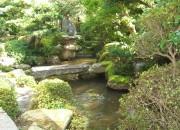 苔の美しさが際立つ趣ある和庭