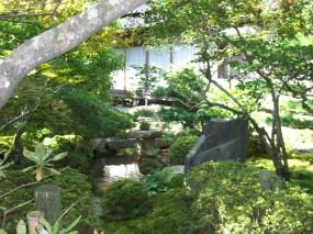 苔の美しさが際立つ趣ある和庭6